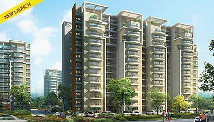 Property in Unitech Exquisite ,Sector 71, Gurgaon Delhi NCR