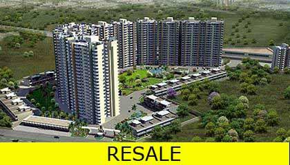 Flat in DLF New Town Heights ,Sec 86, 90  Delhi NCR